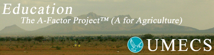 banner A FactorProject2 The A Factor Project™