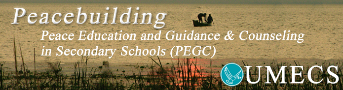 PeaceEducationPageBanner Box Page